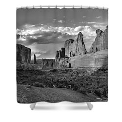 Park Avenue Shower Curtain