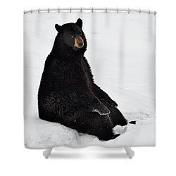 Shower Curtain featuring the photograph Park Bench by Tony Beck