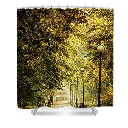 Park Lane Shower Curtain