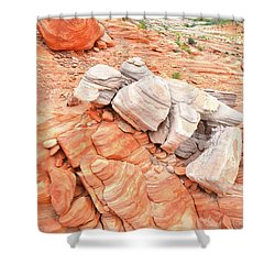 Shower Curtain featuring the photograph Park Road Sandstone In Valley Of Fire by Ray Mathis