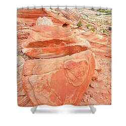 Shower Curtain featuring the photograph Park Road View In Valley Of Fire by Ray Mathis