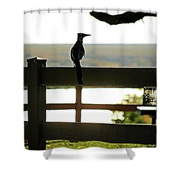 Park Roadrunner Shower Curtain