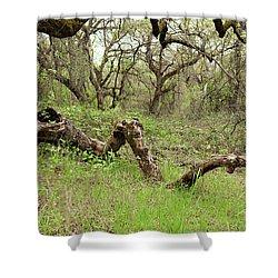 Park Serpent Shower Curtain by Carol Lynn Coronios