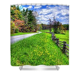 Parkway Spring Shower Curtain by Dale R Carlson