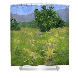 Parkway Spring Oil Shower Curtain
