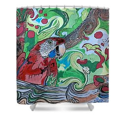 Parrot Kaleidoscope  Shower Curtain