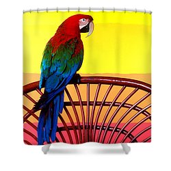 Parrot Sitting On Chair Shower Curtain by Garry Gay