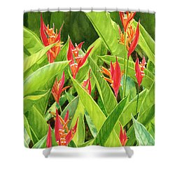 Parrots Flower With Background Shower Curtain