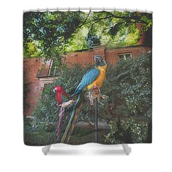 Parrots In The Garden Shower Curtain