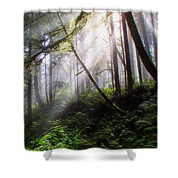 Parting Of The Mist Shower Curtain