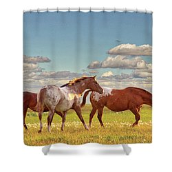 Party Of Three Shower Curtain