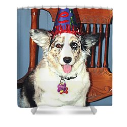 Shower Curtain featuring the photograph Party Time Dog by Cathy Donohoue