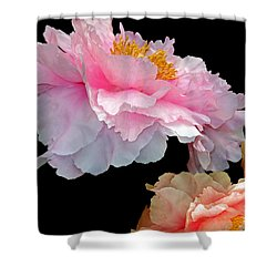 Pas De Deux Glowing Peonies Shower Curtain