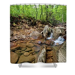 Passage Creek Summer 2016 Shower Curtain