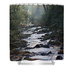 Passage Of Time Shower Curtain by Lamarre Labadie