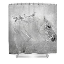 Passengers Shower Curtain