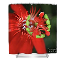 Shower Curtain featuring the photograph Passiflora Vitifolia Scarlet Red Passion Flower by Sharon Mau