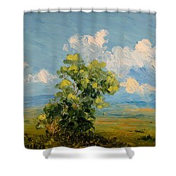 Passing Clouds Shower Curtain