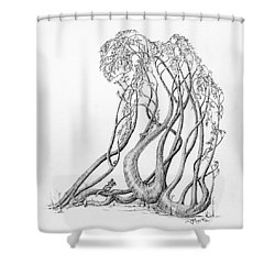 Passing Glances Shower Curtain by Mark Johnson