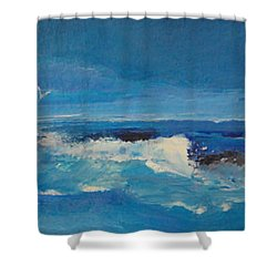 Passing Storm Shower Curtain by Diane Ursin