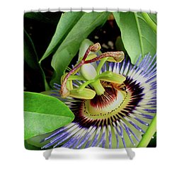 Passion Flower Shower Curtain