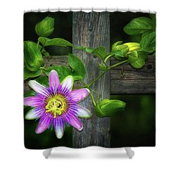 Passion Flower On The Fence Shower Curtain
