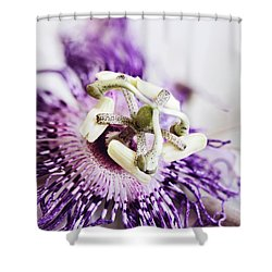 Shower Curtain featuring the photograph Passion Flower by Stephanie Frey