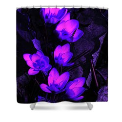 Passionate Blooms Shower Curtain by Karol Livote