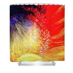 Passions From Within Shower Curtain