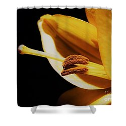 Passionate Yellow Lily Shower Curtain