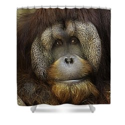 Shower Curtain featuring the photograph Passive by Cheri McEachin