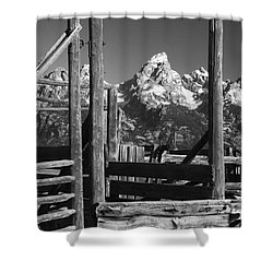 Past Its Time Shower Curtain by Sandra Bronstein