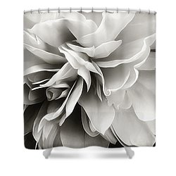 Shower Curtain featuring the photograph Past Lives by Darlene Kwiatkowski