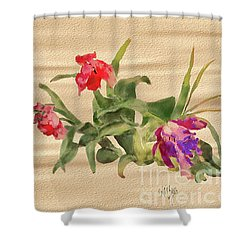 Shower Curtain featuring the digital art Past Prime by Lois Bryan