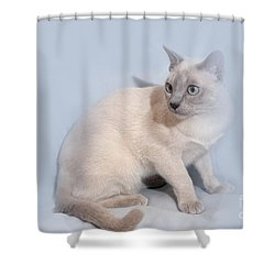 Pastel Angel Kitty Shower Curtain