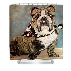 Shower Curtain featuring the painting Pastel English Brindle Bull Dog by Patricia L Davidson