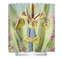 Shower Curtain featuring the digital art Pastel Iris by Lois Bryan