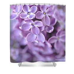 Pastel Lilacs Shower Curtain