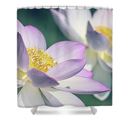 Pastel Lotus Shower Curtain