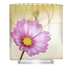 Pastel Petals Shower Curtain by MTBobbins Photography