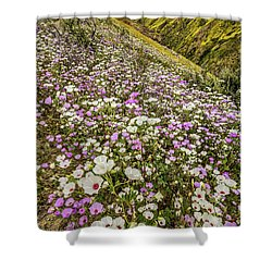 Shower Curtain featuring the photograph Pastel Super Bloom by Peter Tellone