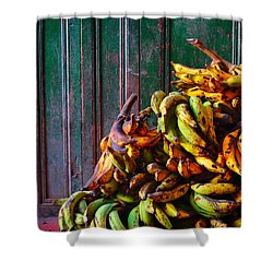 Patacon Shower Curtain by Skip Hunt