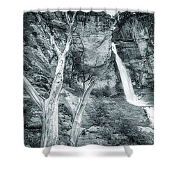 Patagonian Waterfall Shower Curtain by Andrew Matwijec