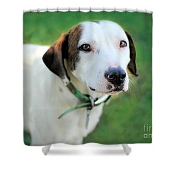 Shower Curtain featuring the photograph ''patch'' by Marion Johnson