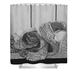 Patch Work Shower Curtain by A  Robert Malcom