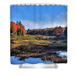 Shower Curtain featuring the photograph Patches Of Fog At The Green Bridge by David Patterson
