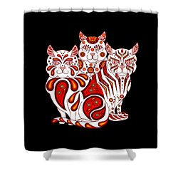 Patches, Stripes, And Bobbles In Red Shower Curtain
