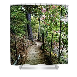 Path Along The Pond Shower Curtain