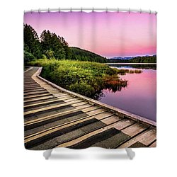 Path By The Lake Shower Curtain by Rod Jellison