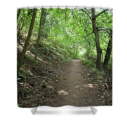 Shower Curtain featuring the photograph Path By The River by Ben Upham III